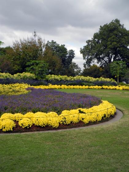 Arboretum Lawn