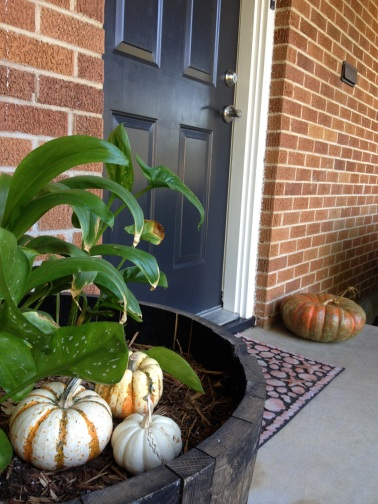pumpkins planter 2